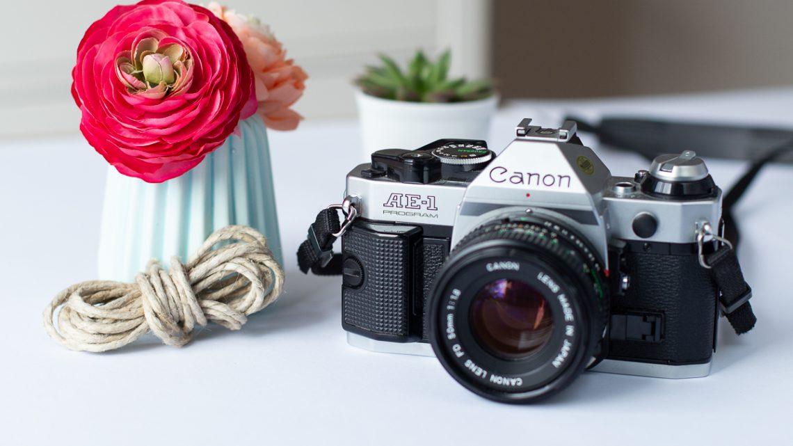 Endlich bessere Blogfotos – meine Top 3 Tipps