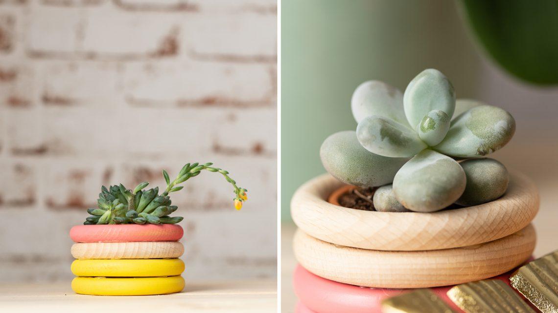 Pflanztöpfe aus Holzringen basteln – DIY Upcycling