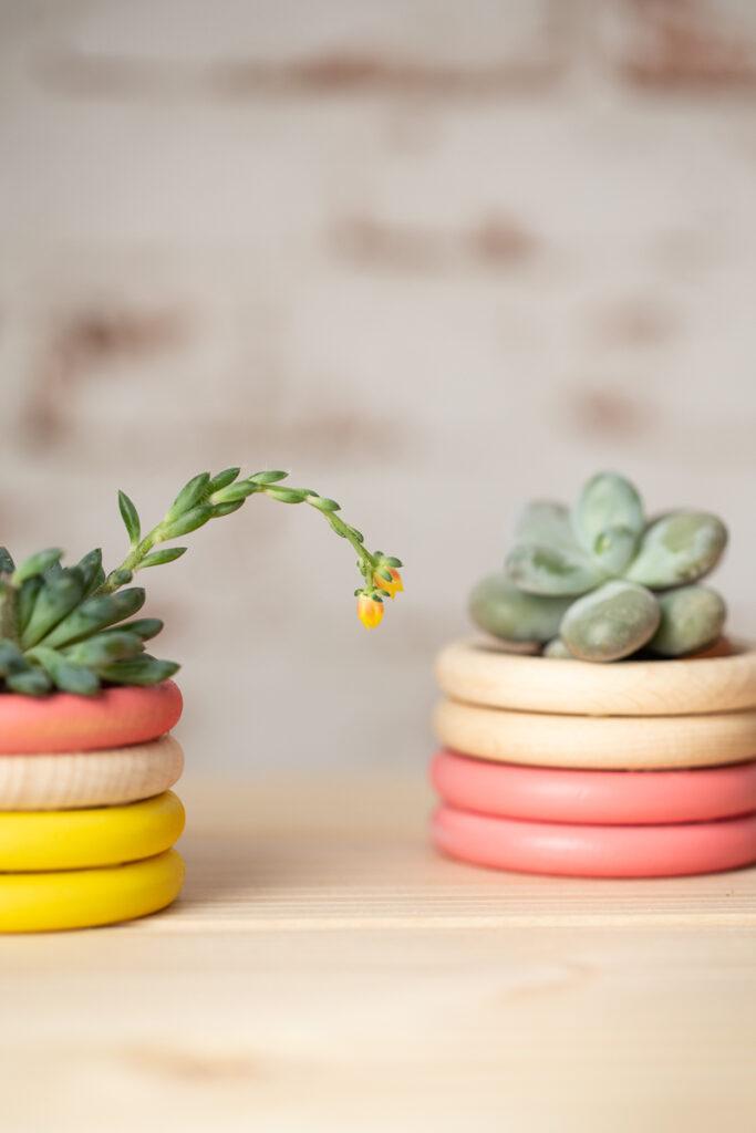 Pflanztöpfe aus Holzringen basteln - DIY Upcycling