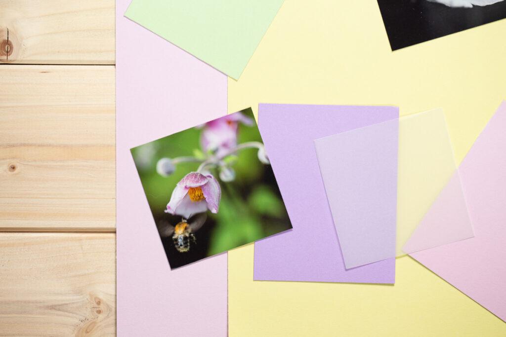 DIY Polaroid Grußkarten basteln