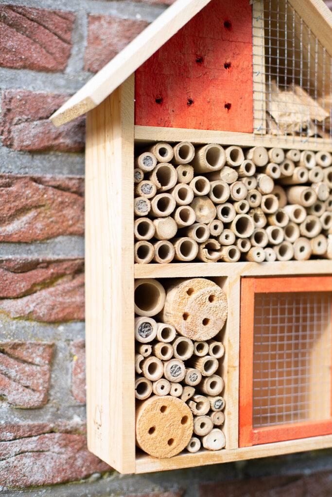 DIY Bienentränke - Mini Oase für Insekten selbermachen