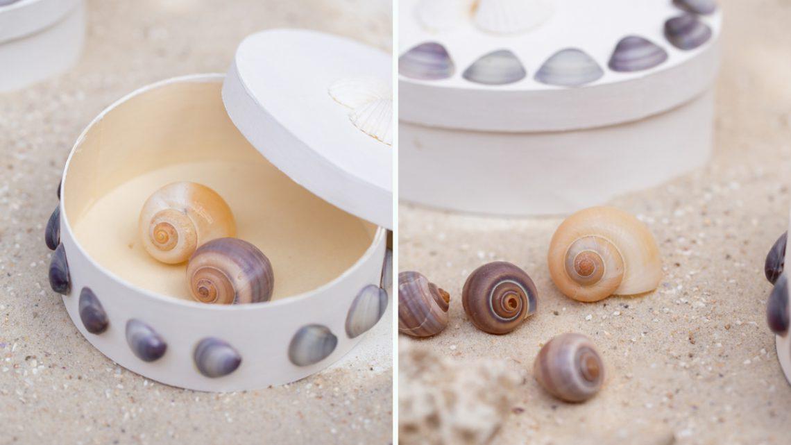 Basteln mit Muscheln – Maritime DIY Boxen mit Muscheln