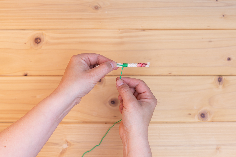 DIY Kaktus aus Wolle selber machen - Makramee Wanddeko