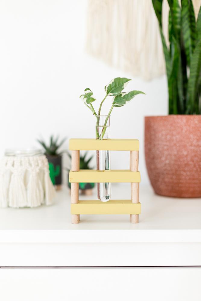 DIY Vase für Pflanzen Ableger selber machen