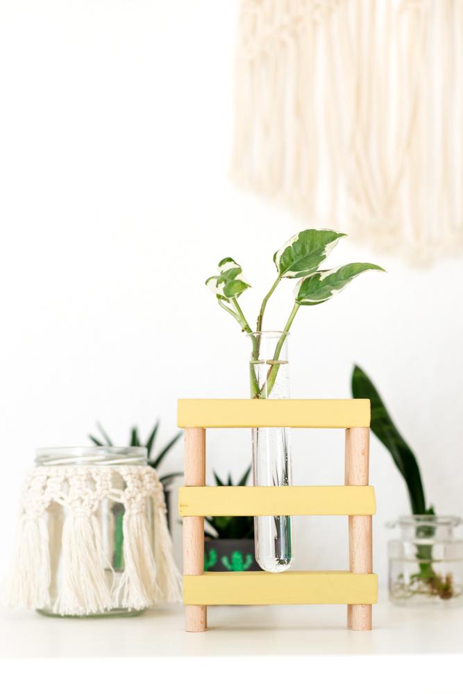Vase für Pflanzen Ableger selber machen