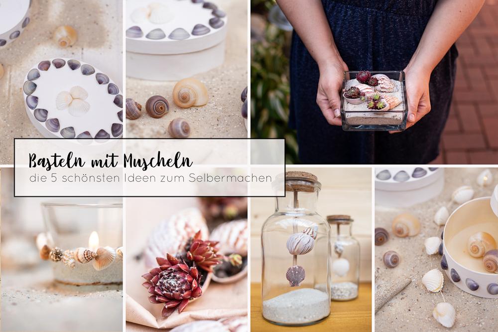 Basteln mit Muscheln – die 5 schönsten DIY Ideen