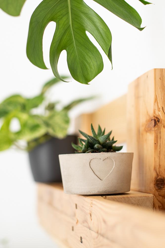 DIY Blumentopf aus Beton selber machen