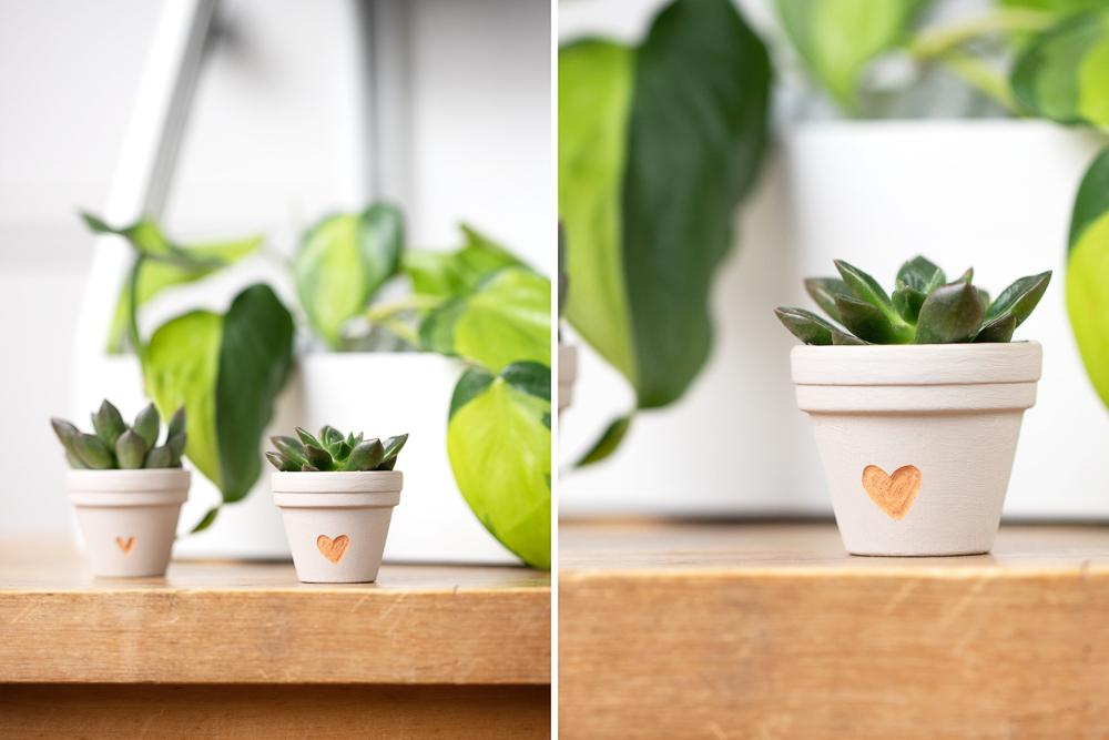 Einen Blumentopf gravieren - DIY Geschenkidee für Pflanzenfreunde