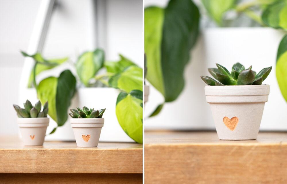 Einen Blumentopf gravieren – DIY Geschenkidee für Pflanzenfreunde